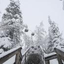 А снег забыл, что март сейчас.  . Предапрельское обновление Леса. . 31 марта 2021 = 31 декабря 2020