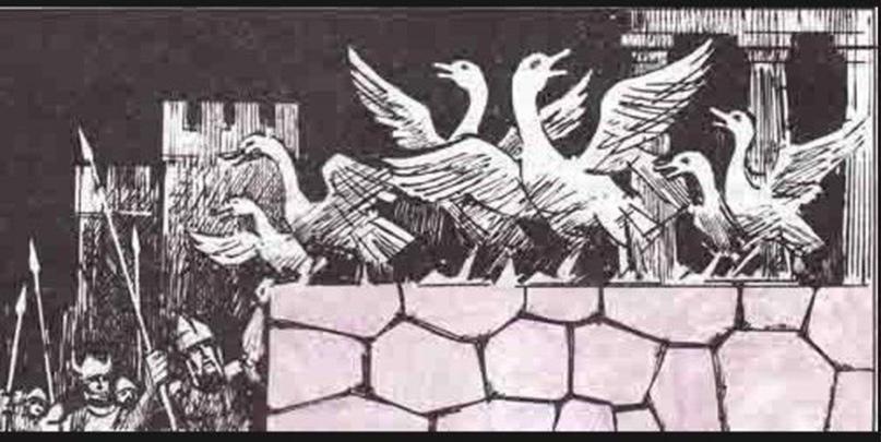 """""""Гуси спасли Рим"""". Легенда гласит, что в определенный момент галлы разработали хитрый план как взять штурмом Капитолий, и уже ползли на стены. Но в этот момент гуси засуетились, разбудили проебавшую всё на свете стражу, а та уже подняла тревогу и нападение отбили. С тех пор в Риме появился праздник, во время которого надо было славить гусей и украшать их, а собак бить палками и даже убивать, так как те проспали галльскую вылазку. Но есть теория что собачки не виноватые, томушта римляне тогда страшно голодали в осаде, и поэтому просто всех своих собак сожрали уже к тому времени. Гусей тоже почти всех, но эти конкретные гуси были при храме богини Юноны, и кушать их большое кощунство."""