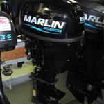 Защита винта и редуктора для лодочного мотора Yamaha 15  лс 2 такта - TM Prop Protect