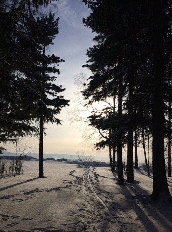 фото из альбома Татьяны Линкевич №15