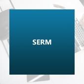 Управление репутацией(SERM)