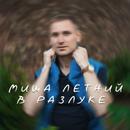 Фотоальбом Мишы Летнего