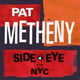Pat Metheny - Timeline