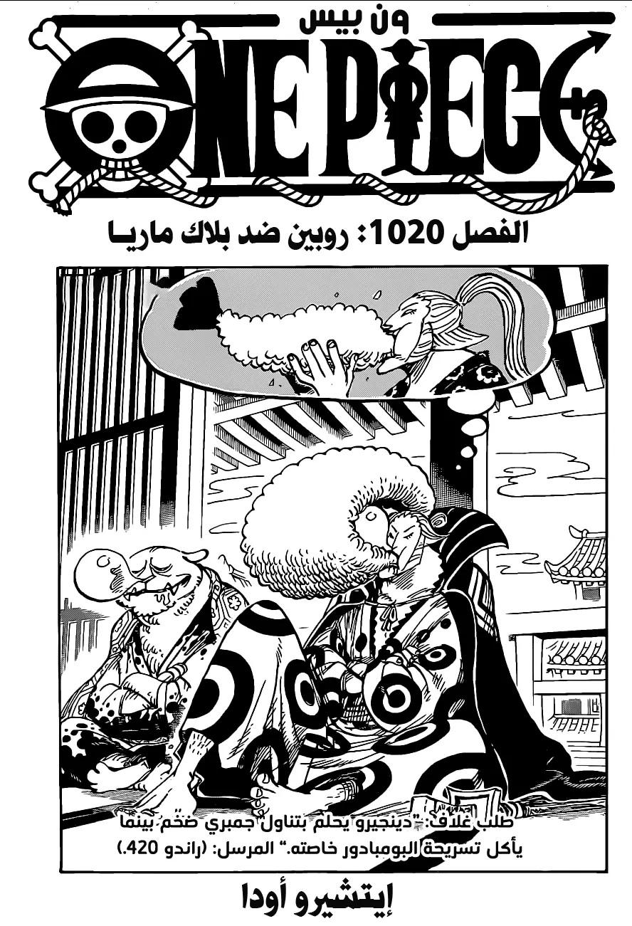 One Piece Arab 1020, image №1