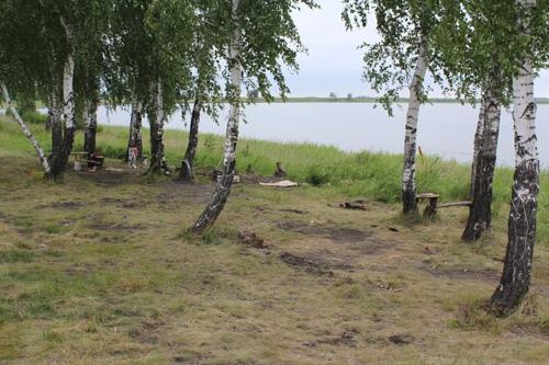 Добро пожаловать в Сафакулевкий район!, изображение №3