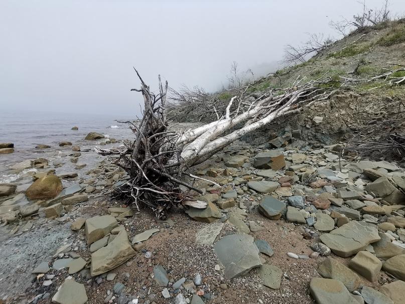 Ветра и шторма, изображение №11