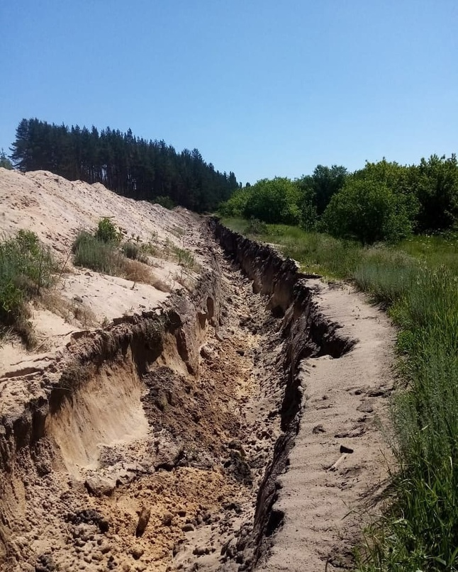 Озеро Круглое под Воронежем опять приходится спасать всем миром.