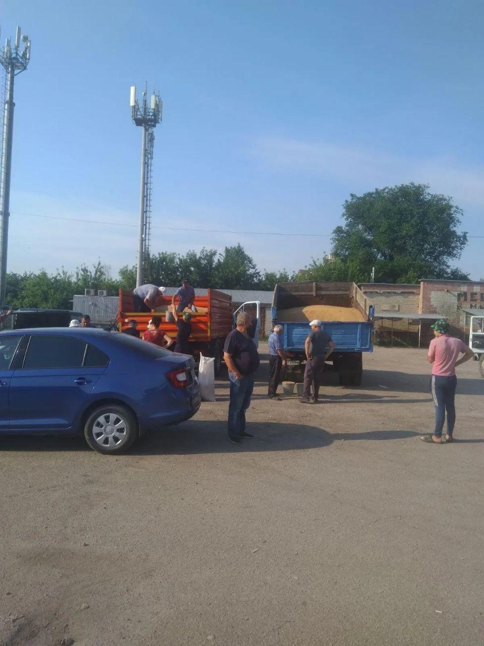 На городском рынке Петровска работала сельскохозяйственная ярмарка
