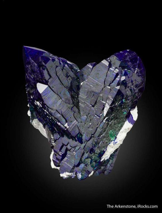 Azurite - JB17-1548 - Milpillas Mine - Mexico Mineral Specimen