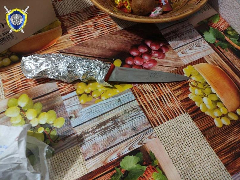 Житель Витебска нанес удары ножом жене и младенцу