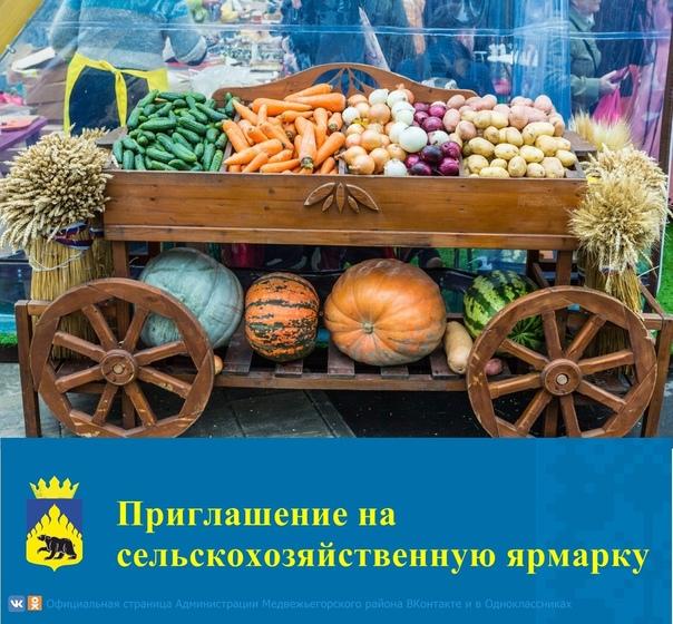 Администрация Медвежьегорского муниципального района приглашает жителей Медвежьегорского района, а также