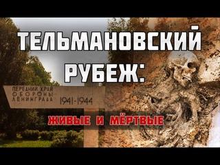 Два метра фекалий над солдатской могилой. Что происходит в поселке Тельмана???