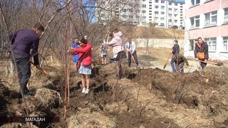 «Волонтеры Победы» и выпускники 28 школы приступили к высадке деревьев