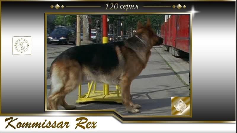 Komissar Rex 11x02 Комиссар Рекс 120 серия