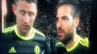 """Fabregas vs Cahill """"football is fucking unbelievable"""""""