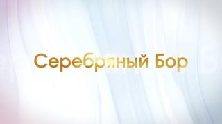 Передача о поселке Серебряный Бор