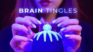 BRAIN TINGLES ASMR Mic Brushing and Scratching (No Talking)