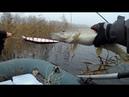 Рыбалка на щуку. Разловил копию Orbit 130 от Allblue Vulcan 133SP